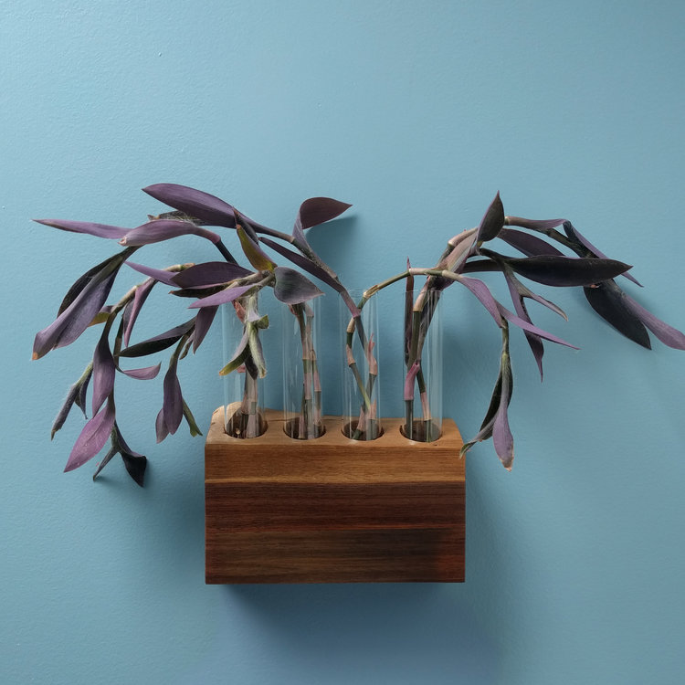 ...The Cradle by Hilton Carter. Now I'll be propagating in style!