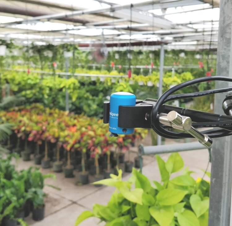 When you use two clamps, you can use it to hold other devices, like this PAR sensor for measuring/recording light data at the nursery.